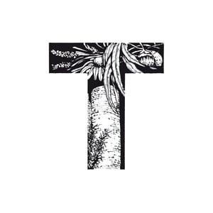 Image of [T] TDM - TORROELLA DE MONTGRÍ