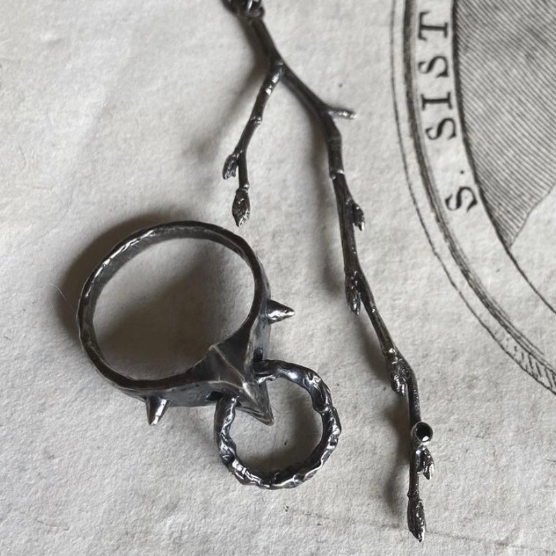 Image of The Voltaire Ring