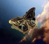 Celestial Butterfly Pin