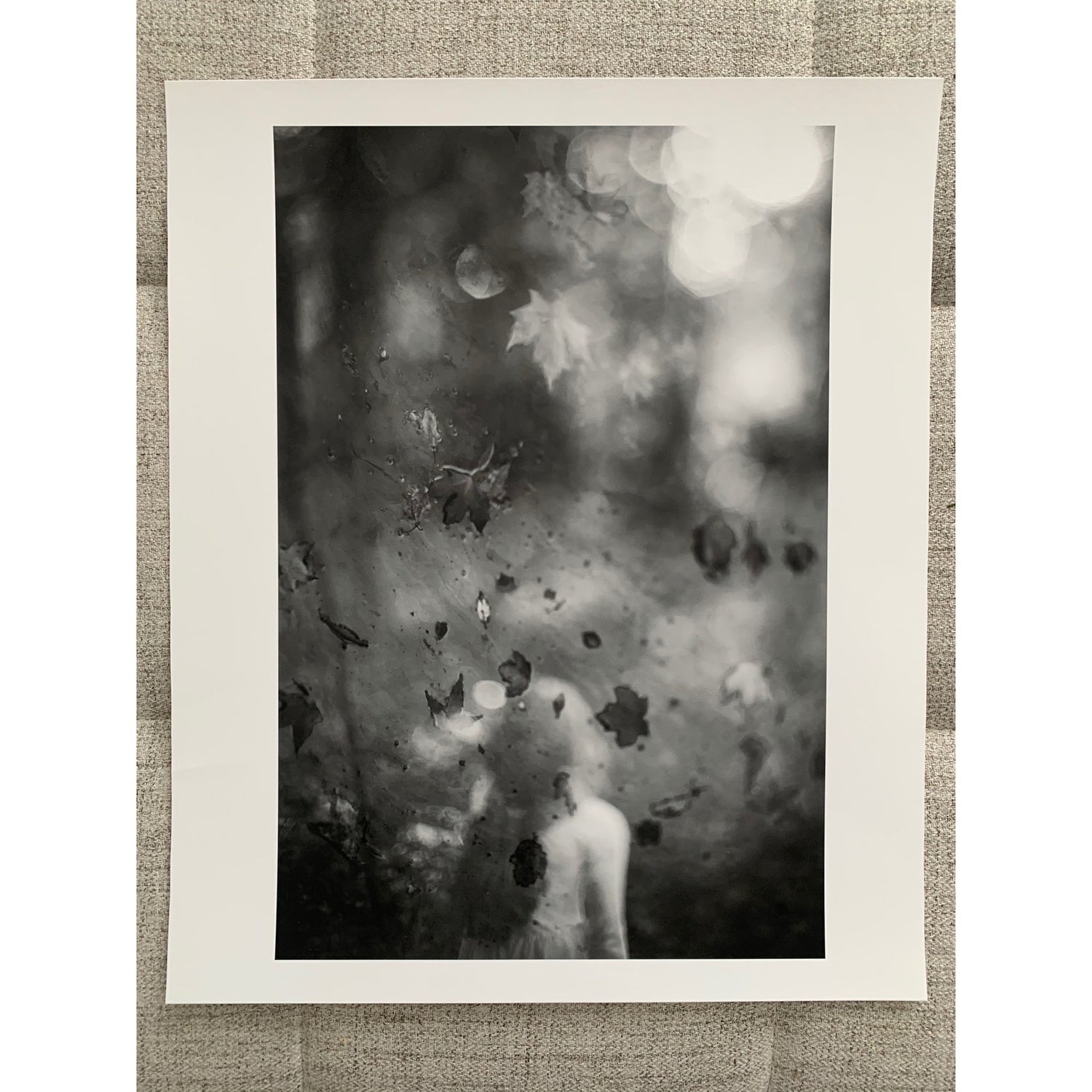"""Image of """"When the Leaves Fell"""" gallery print- ready to ship"""