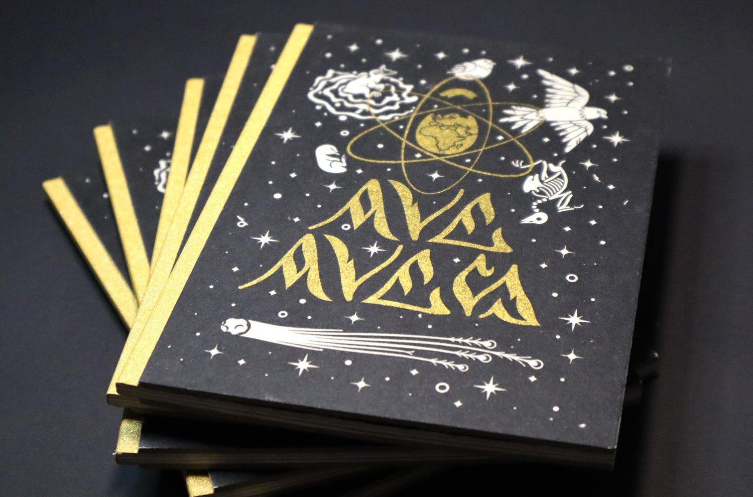 Image of Ave Aves book