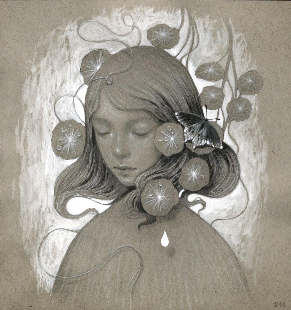 Image of Solari I ~ drawing study