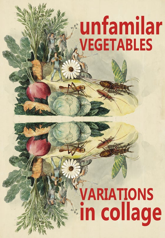 Image of Unfamiliar Vegetables