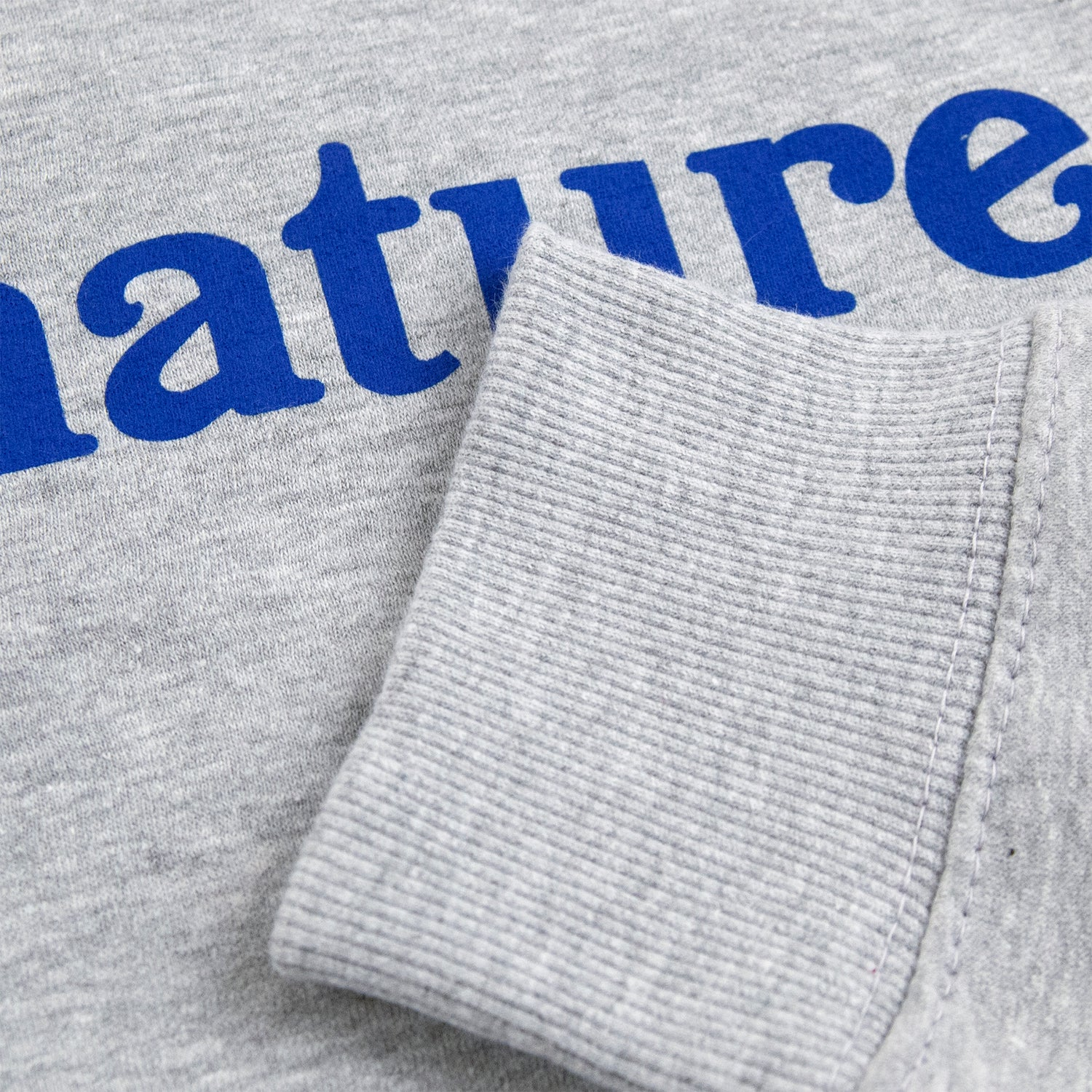 Image of LOGO CREW SWEATSHIRT - HEATHER GREY / BLUE