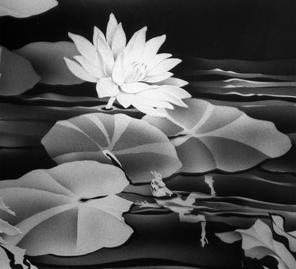 Image of Water Lily with a Frog Black and White Note Cards