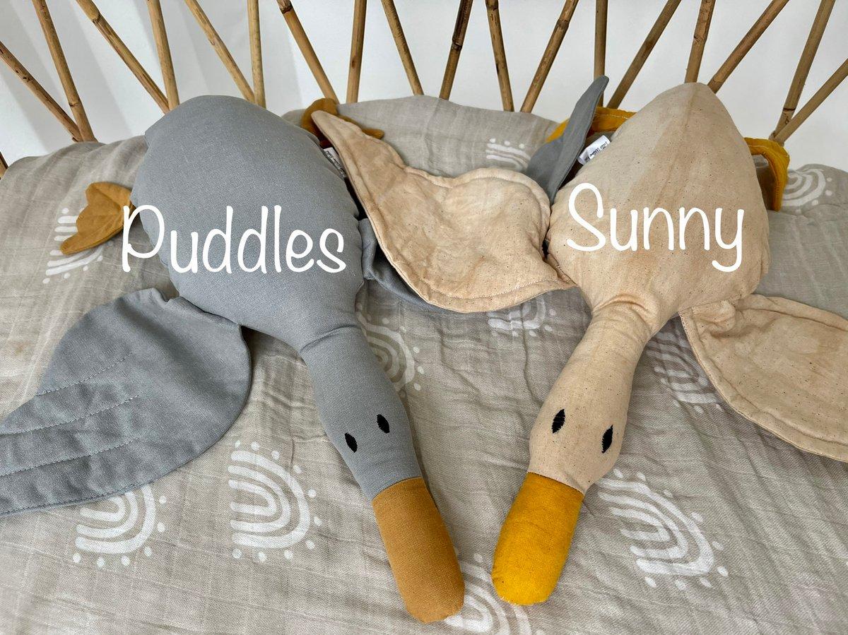 Image of Cuddle Ducks
