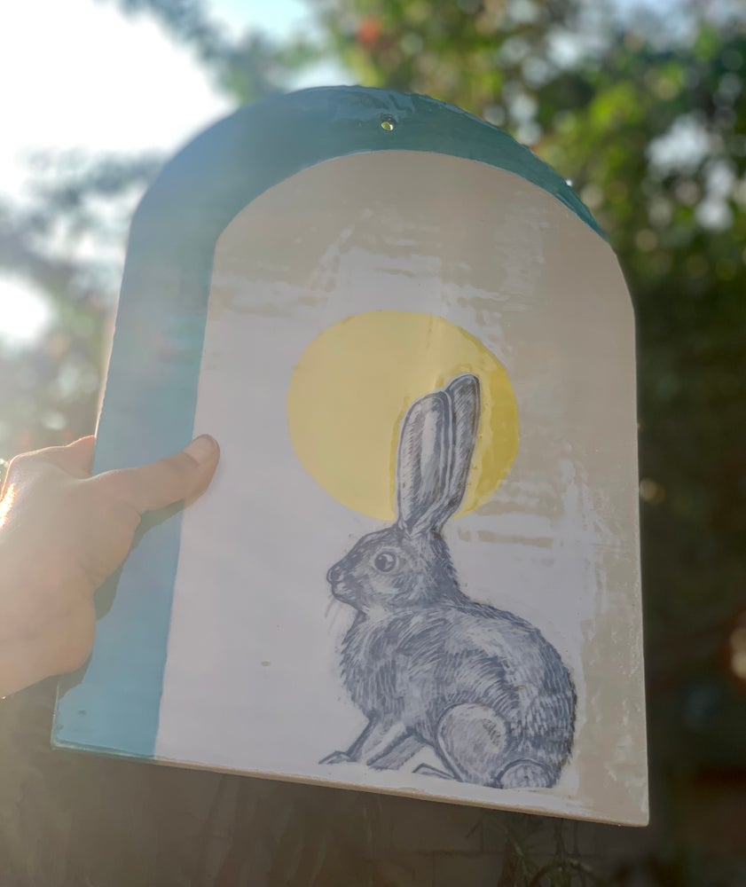 Image of Blue Arch Cottontail
