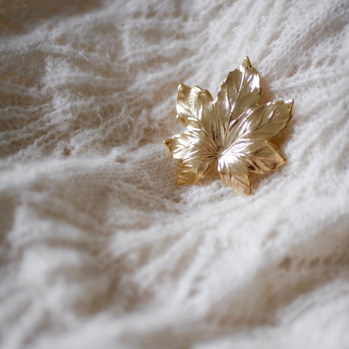Image of Broche Feuille Taille S