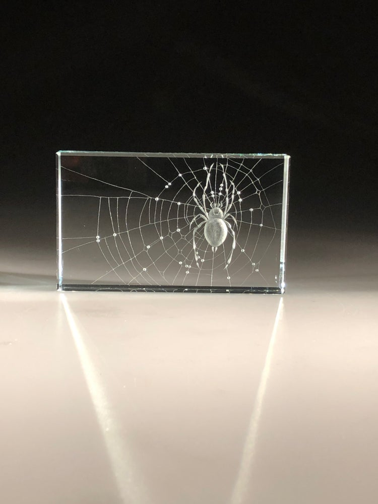 Image of Spider in Web Paperweights