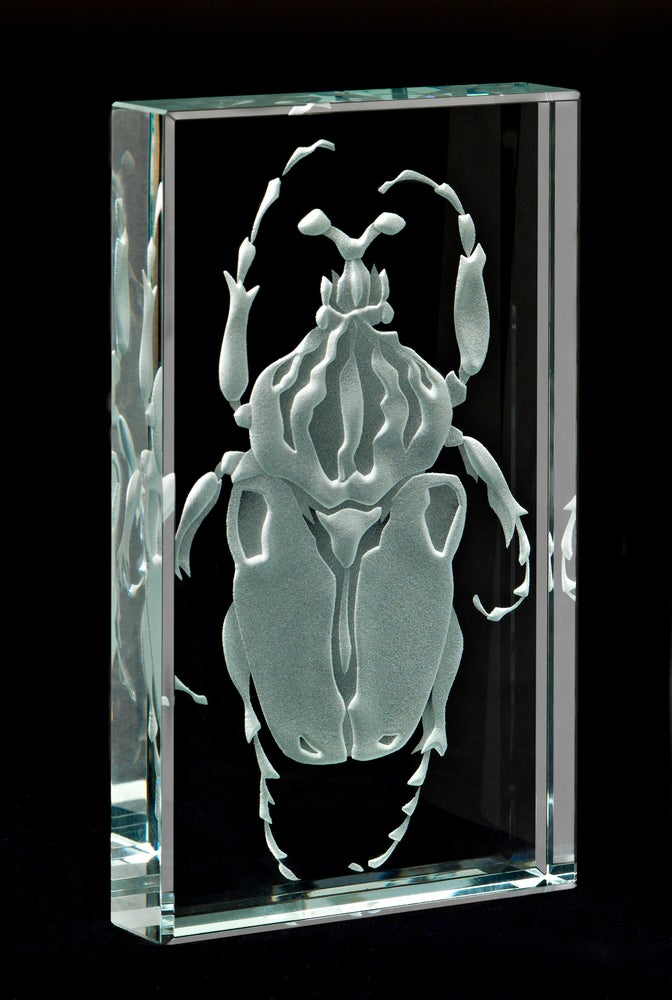 Image of Goliath Beetle Paperweights