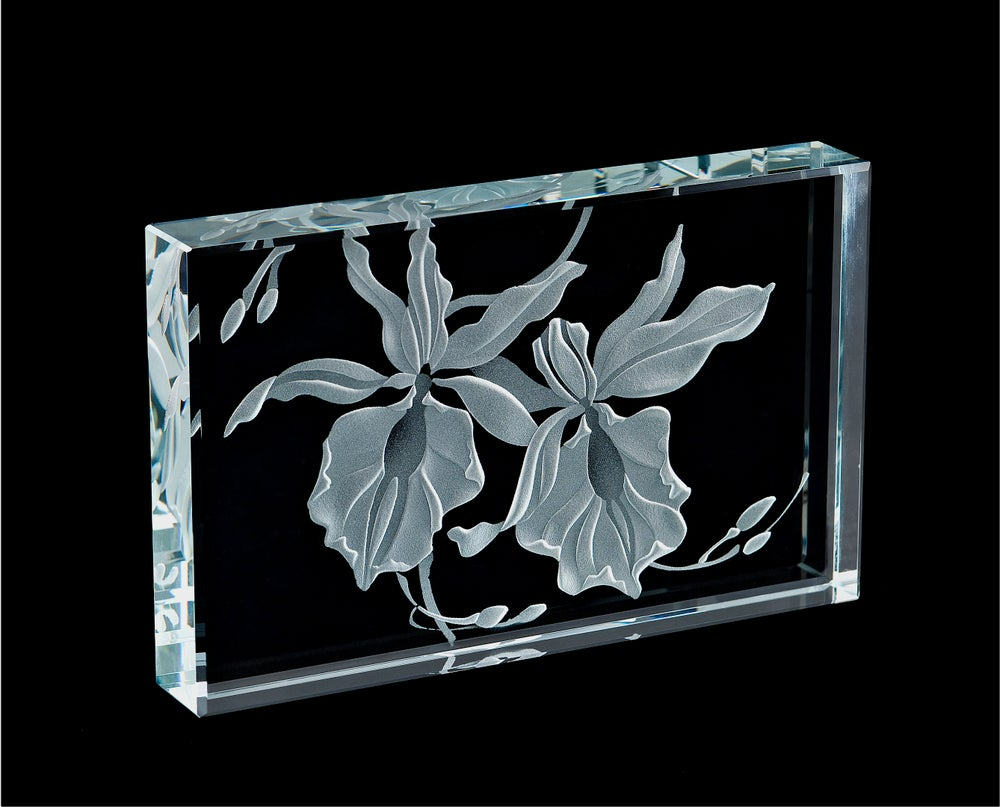 Image of Orchid Paperweights