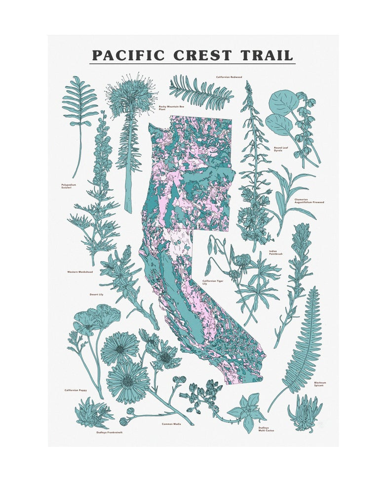Image of Pacific Crest Trail