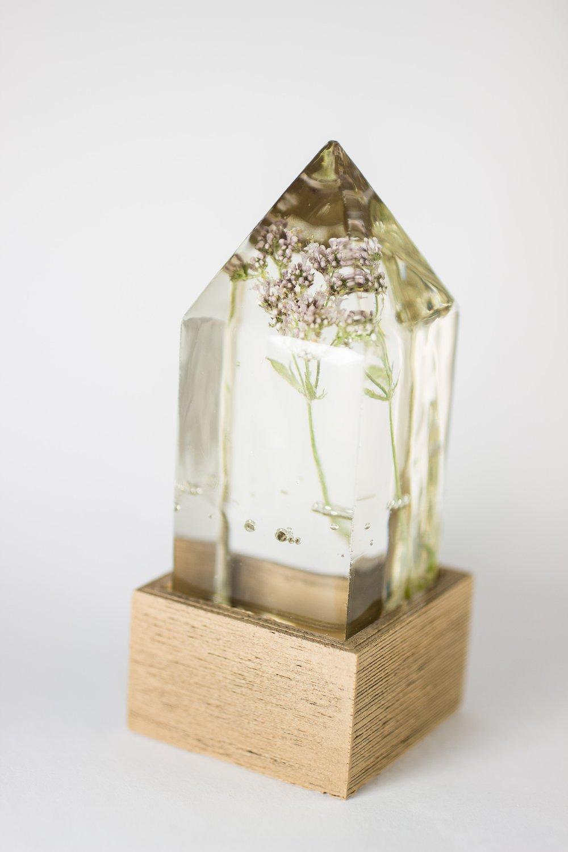 Image of Valerian (Valeriana officinalis) - Floral Night-Light #2