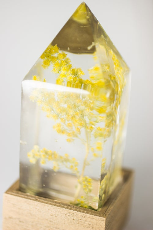 Image of Goldenrod (Solidago canadensis) - Floral Night-Light #2