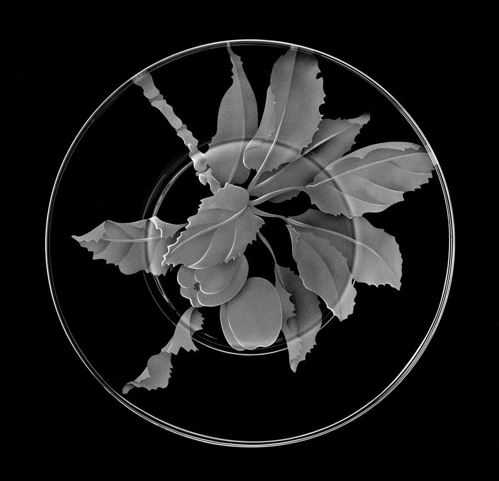 Image of Apple Tree Salad/Dessert Plates