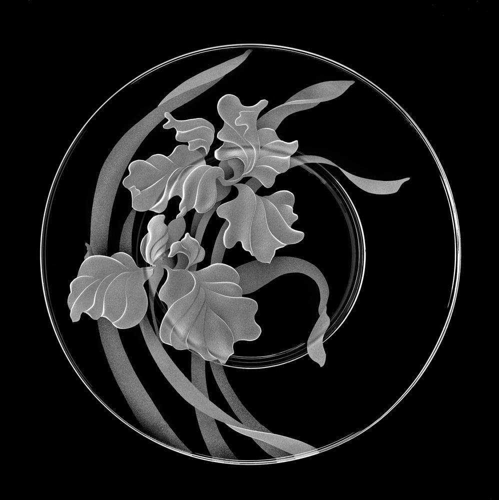 Image of Siberian Irises Salad/Dessert Plates