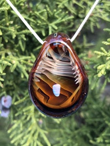 Image of Amazon Bronze Opal