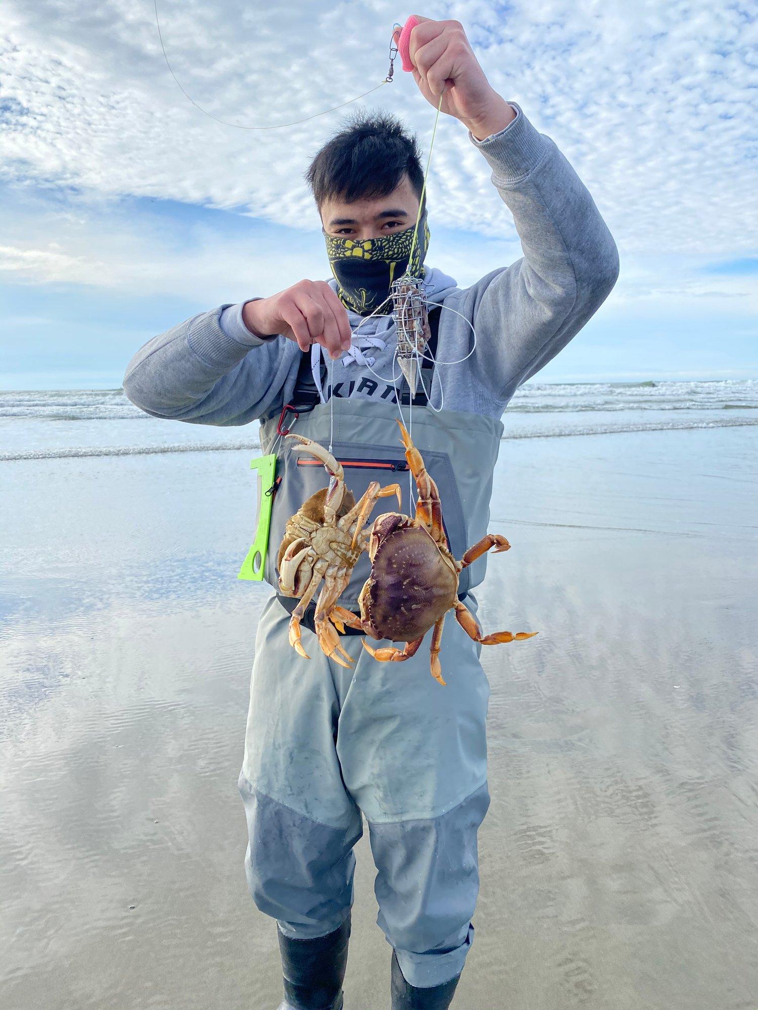 Image of The Nautilus Torpedo Crab Snare