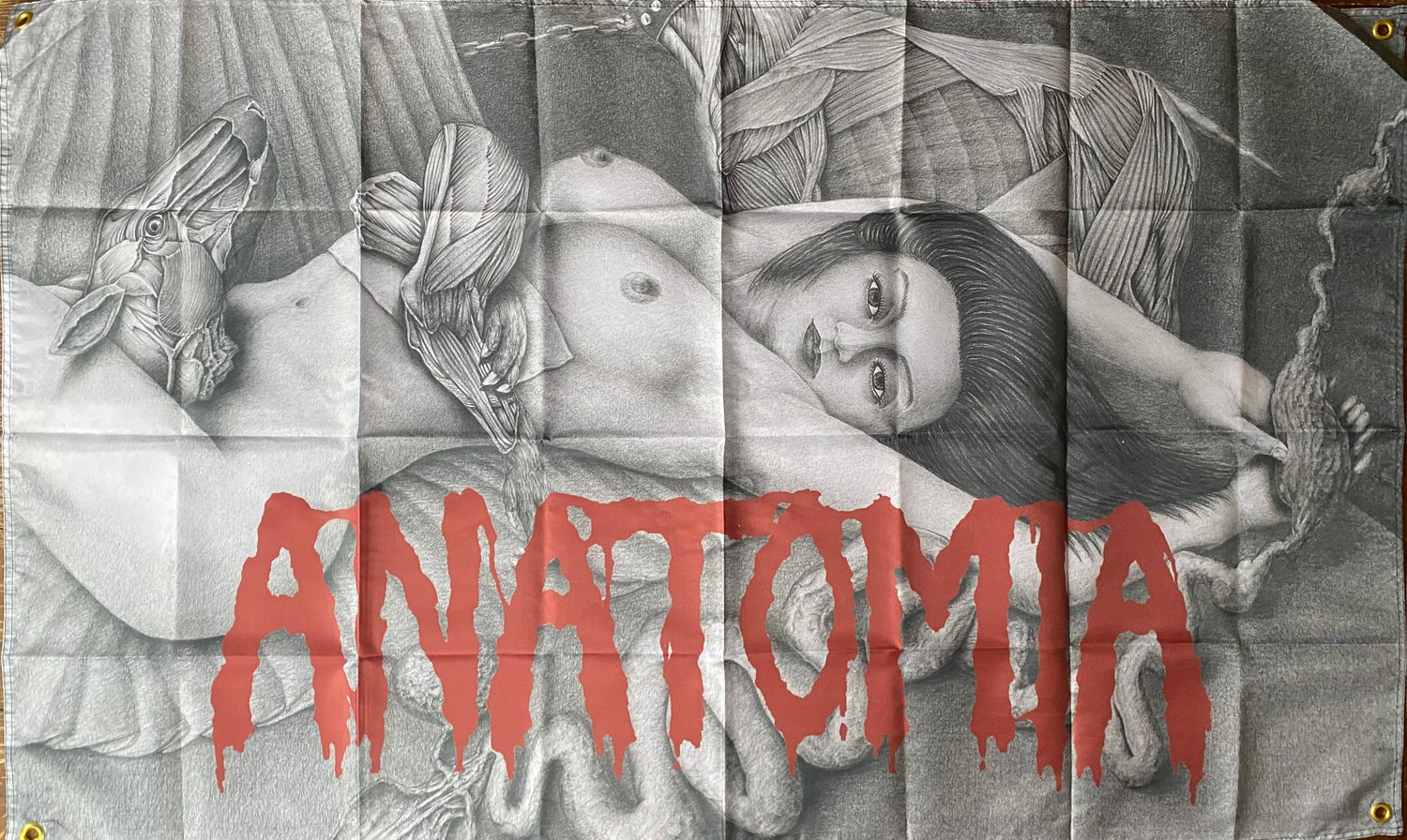 """Image of Anatomia """" Dissected Humanity """"  Flag / Banner / Tapestry"""