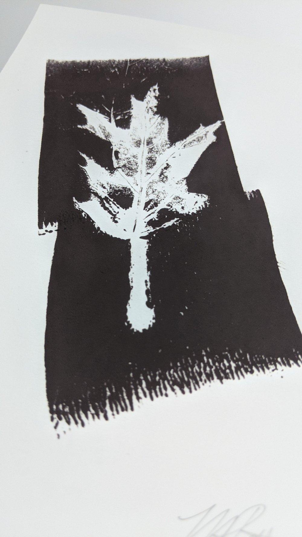 """Renew"" - Our original Oak leaf block art print on recycled paper."