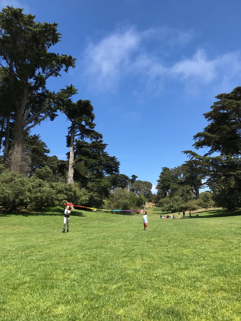 Image of Summer Camp 2021: Art and Nature Camp in Golden Gate Park! July 26th- August 13th