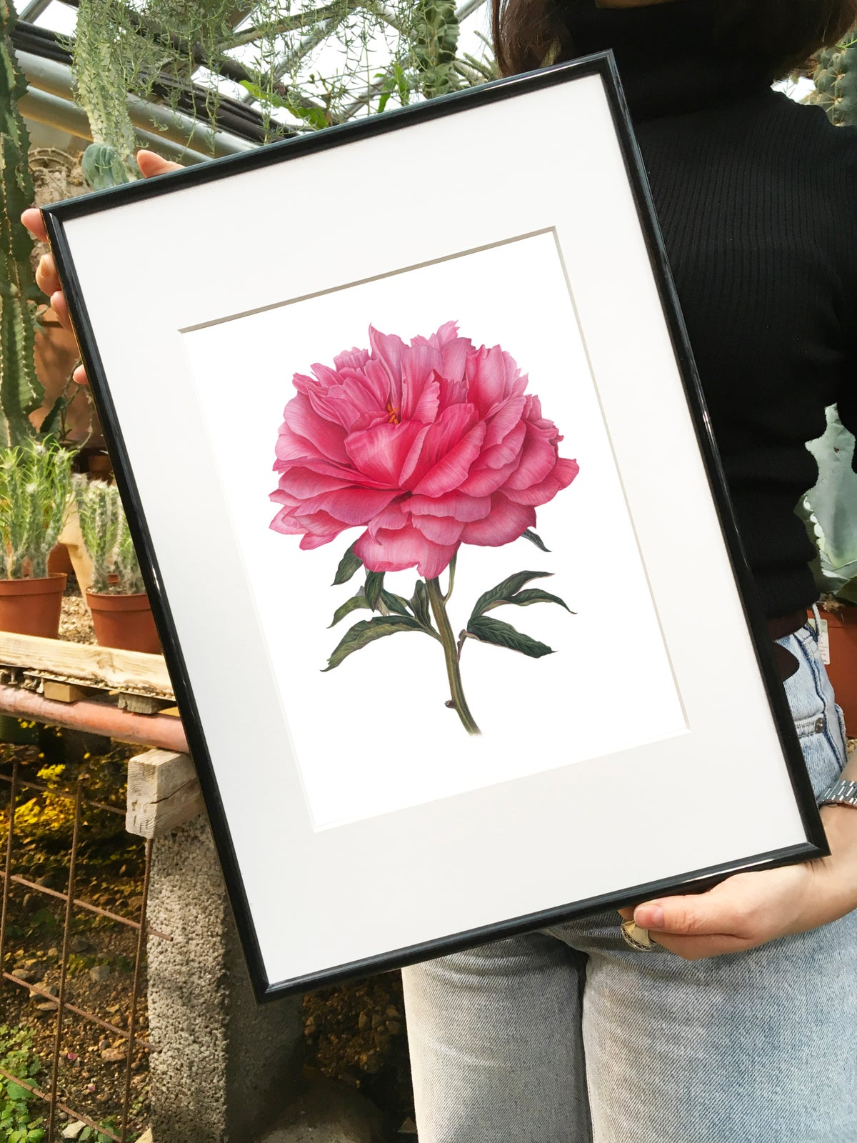 """""""Coral Charm"""". Fine art print of a blooming peony watercolor painting."""