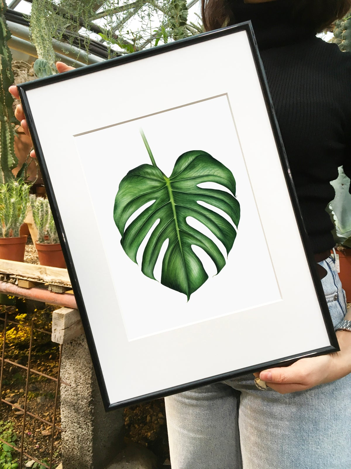 """""""Her Magesty Monstera"""". Fine art print of a botanical watercolor painting."""