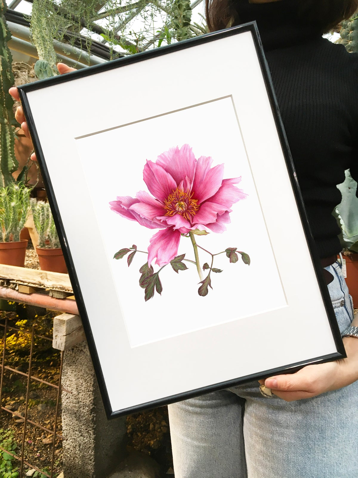 """""""Tree Peony"""". Fine art print of a botanical watercolor painting."""