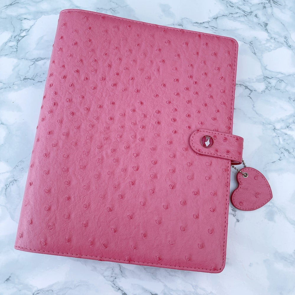 Image of *NEW* PARIS PINK OSTRICH ORGANISER