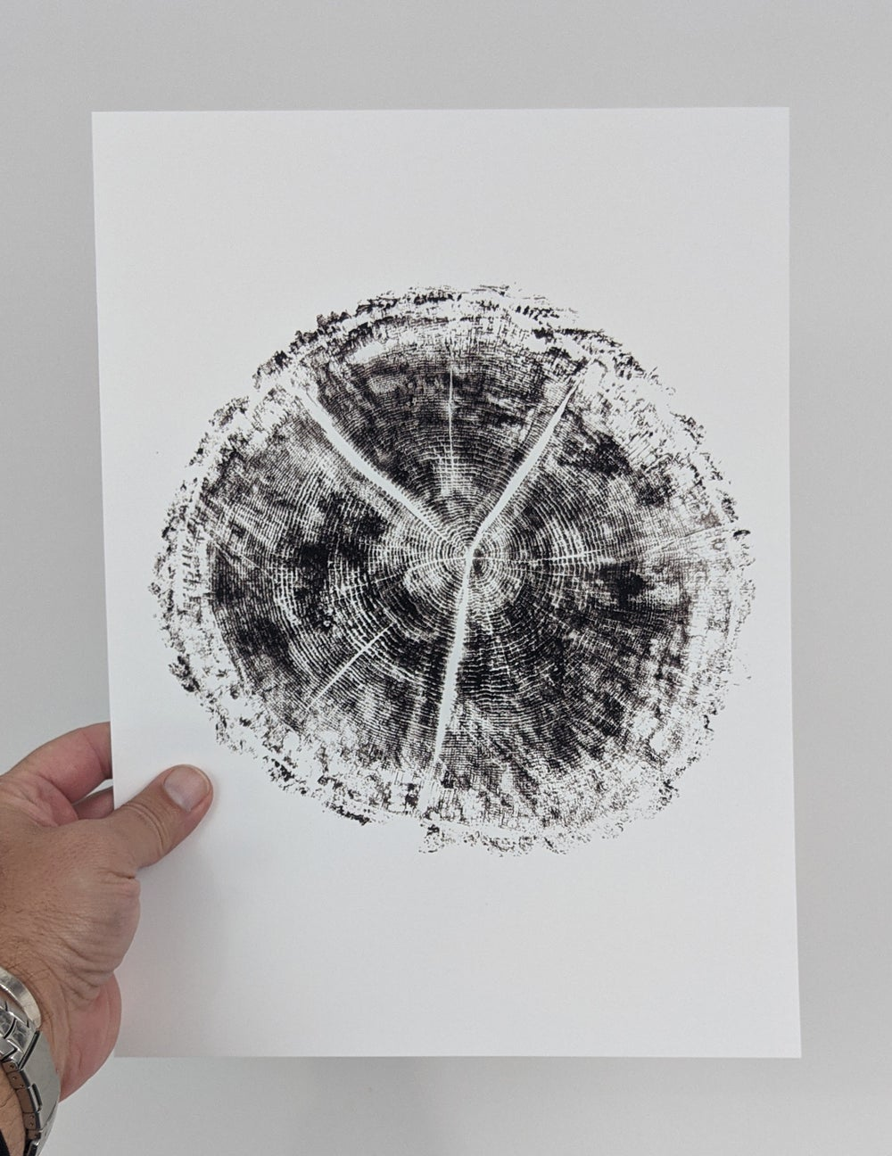 """Age"" - Our original tree ring block art print on recycled paper."