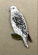 January 2021 UK Birding Pin Releases