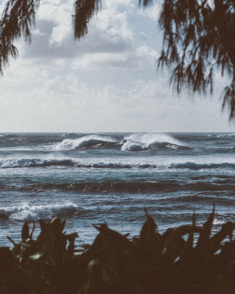Image of North Shore