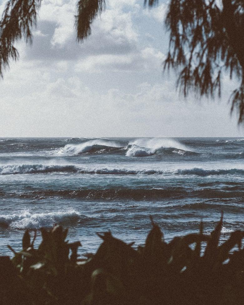 Image of North Shore