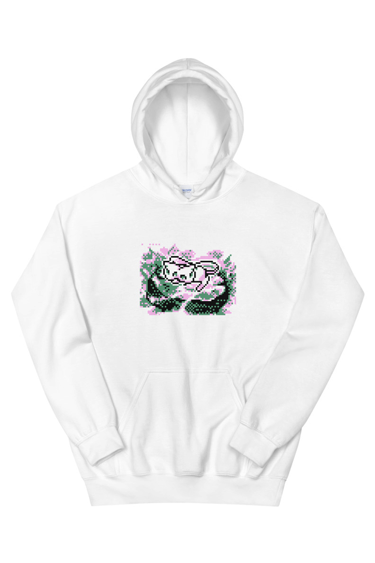 Image of †DR3AM3W†® - Hoodie