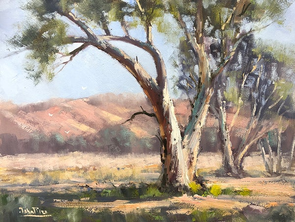 Image of In The Macdonnell Ranges