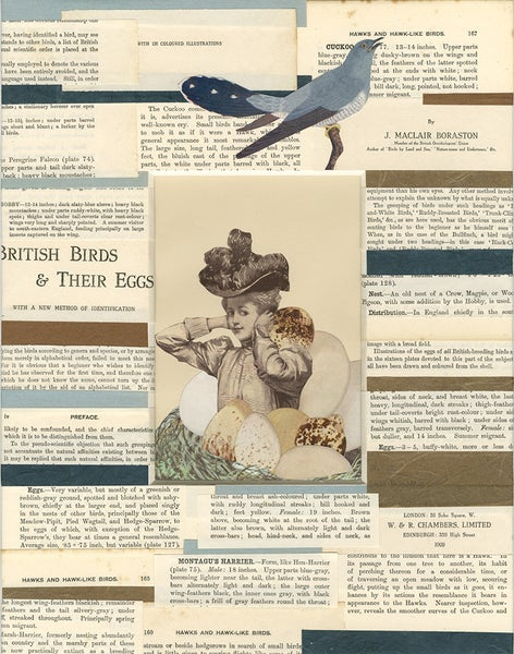 Image of Ms. Featherbottom was a bit of a cuckoo. Original collage.