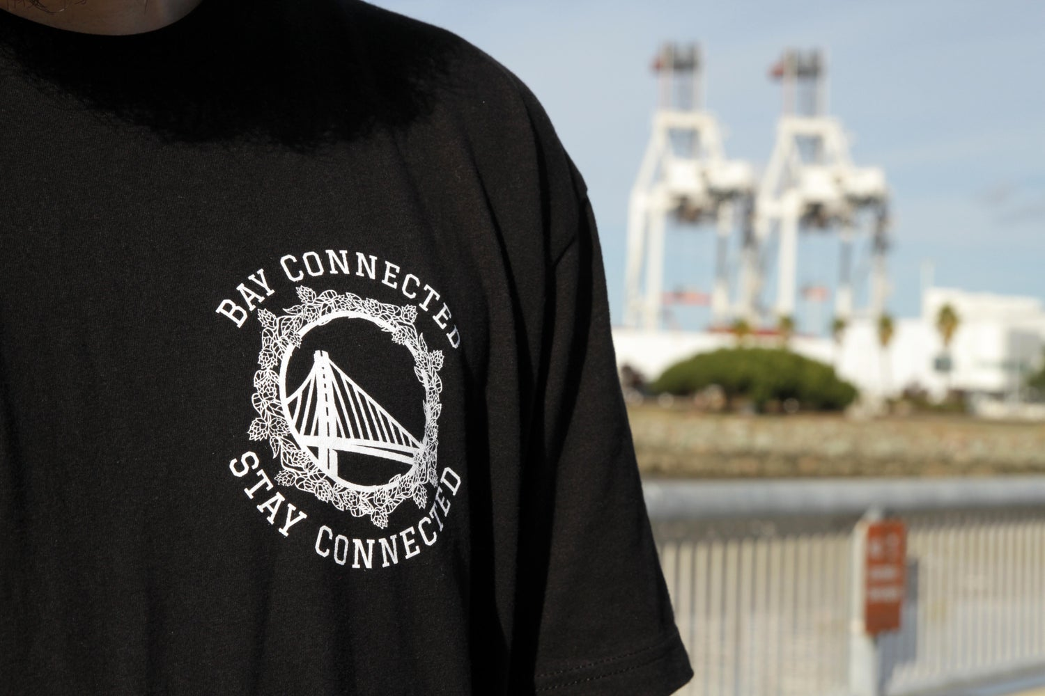 Image of Bay Connected + gift