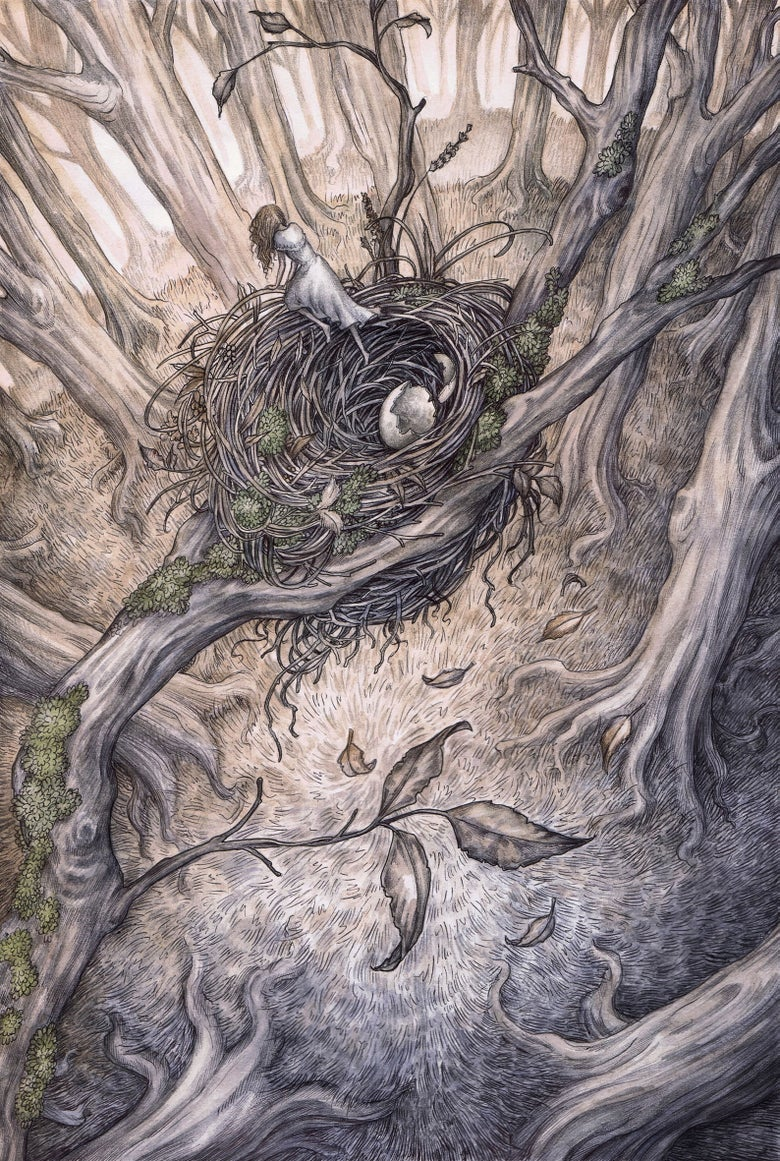 Image of 'Hatchling' by Adam Oehlers