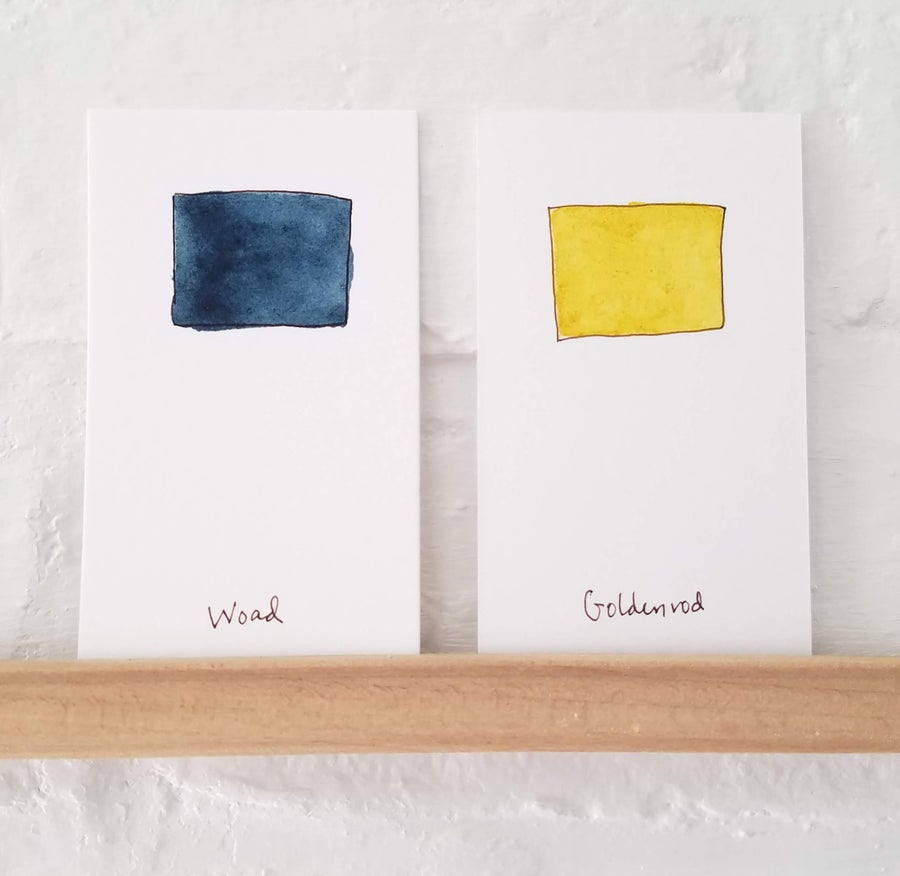 Image of Handmade Watercolors: Woad and Goldenrod