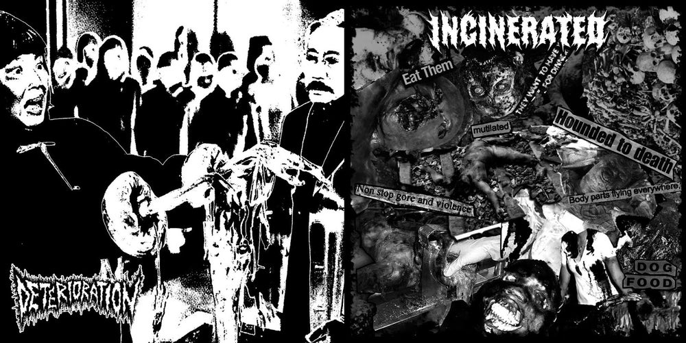 "Image of Deterioration / Incinerated - Split 7"""