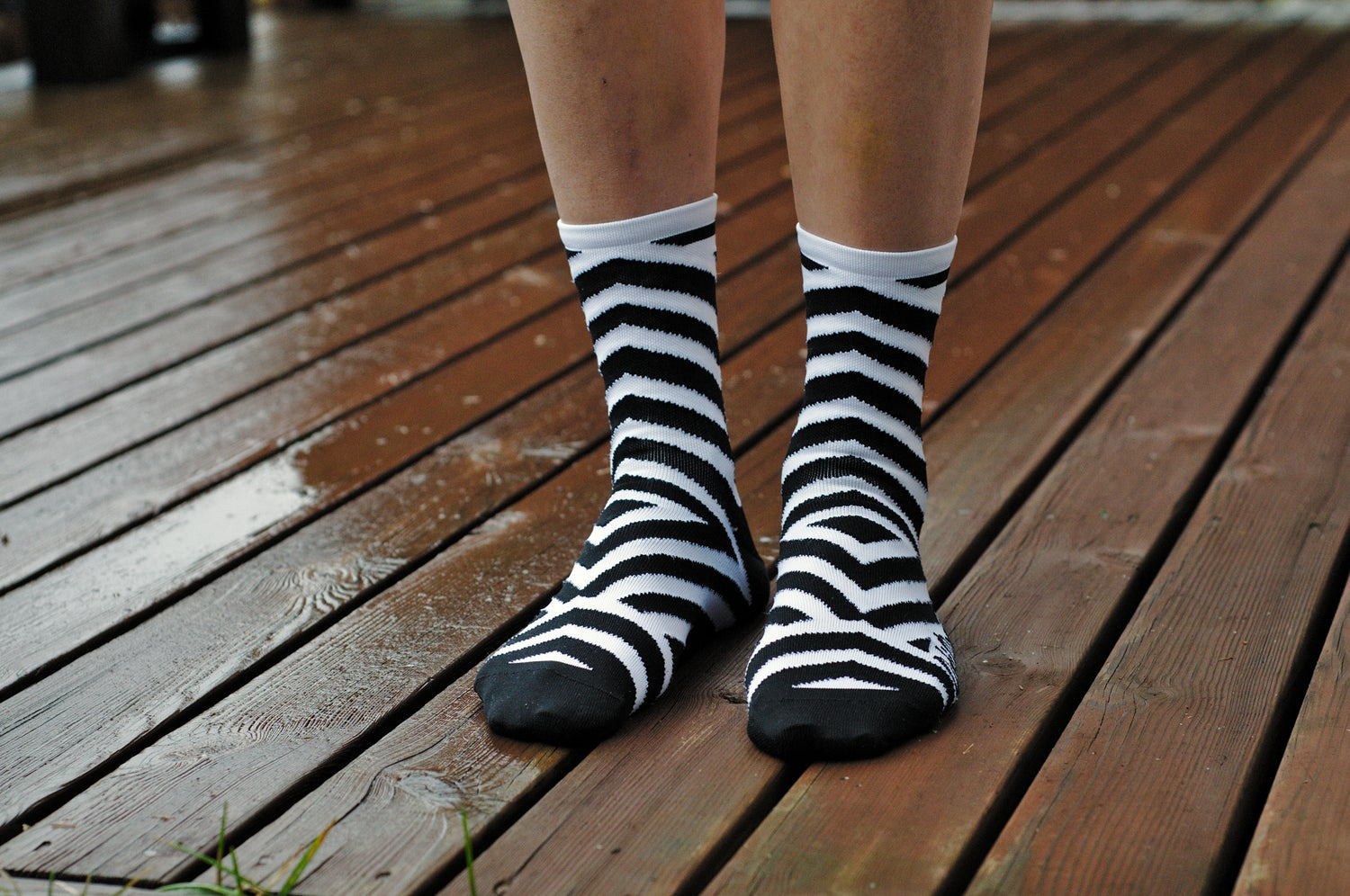 Image of 5.5 Inch Tall Razzle&Dazzle Summer Sock