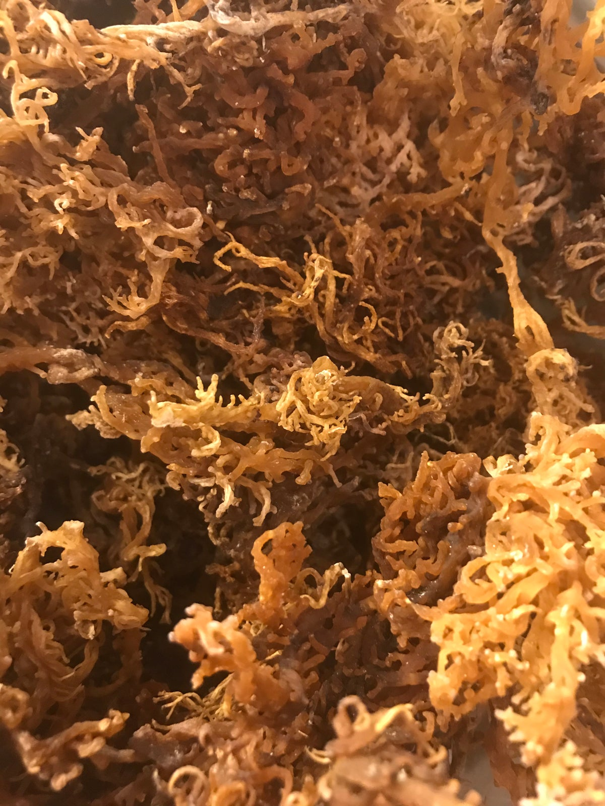 Raw Loose Wild Crafted Sea Moss (200grams)