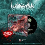Image of HYSTERORRHEXIS - Maggots Infest the Limb Cd's