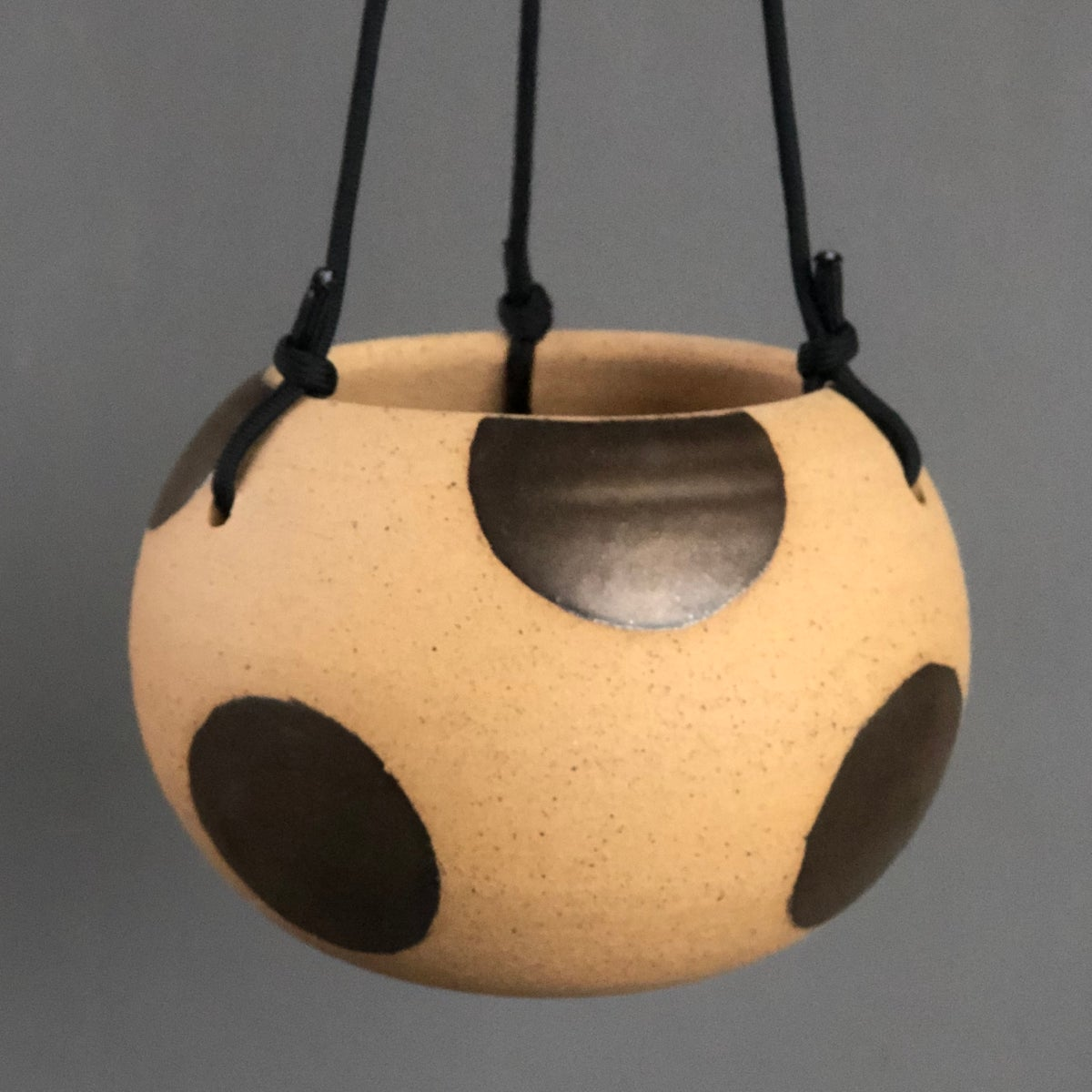 Image of Saturated gold polka dot hanging planter