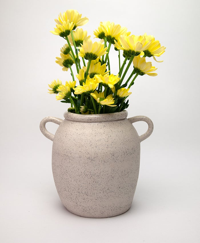 Speckled Pot (with handles) No 4