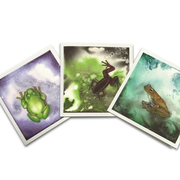 Image of Frog cards (Set of 12)