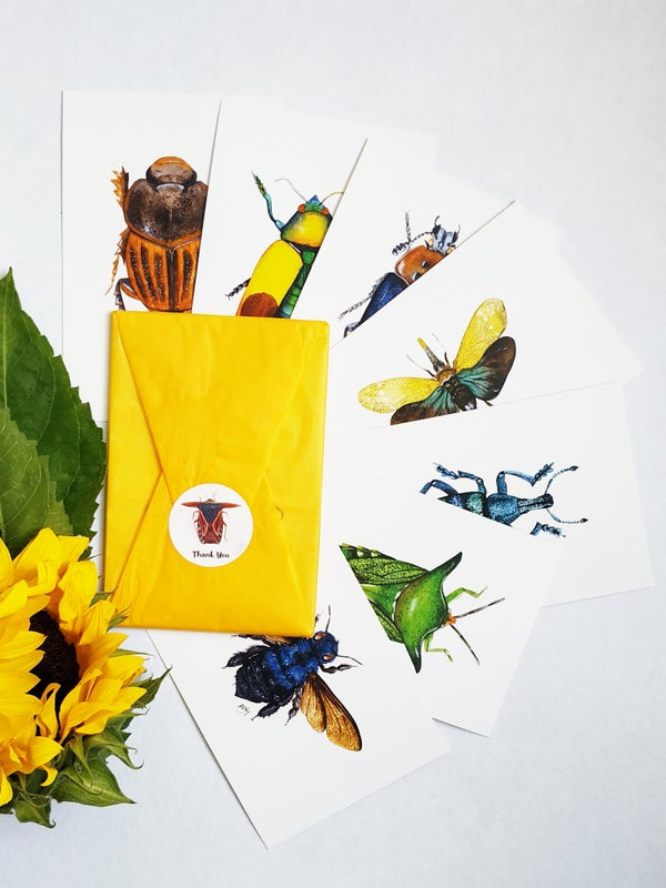 Image of Insect postcards set, bug notecard & insect cards, insect potscard bundle with 7 different bugs