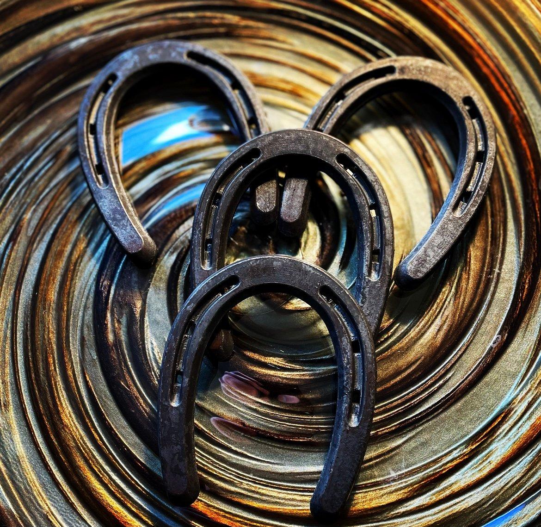 Image of Luck mini horseshoe