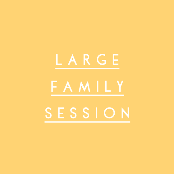 Image of Large Family Session