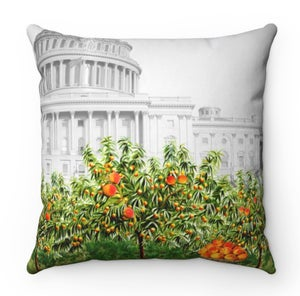 Image of Stacey Abrams throw pillow
